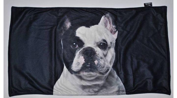 K008-Francia-Bulldog-feketefehér.jpg