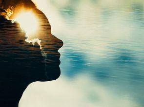 A személyiség modell törzse: érzelmi folyamatok